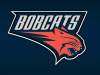 Charlotte Bobcats in process of changing name back to Hornets