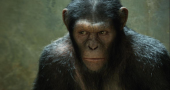 First Dawn of the Planet of the Apes teaser