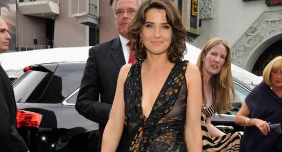 Cobie Smulders also stars in the film