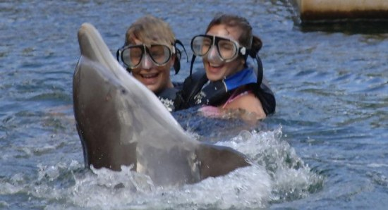 The couple share a swim with dolphins