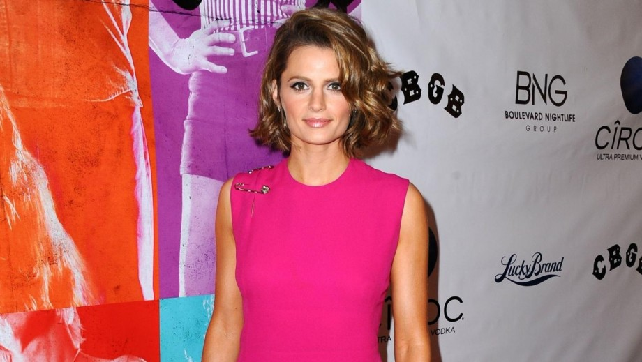 Castle star Stana Katic ready for breakout role as Hollywood feature actress