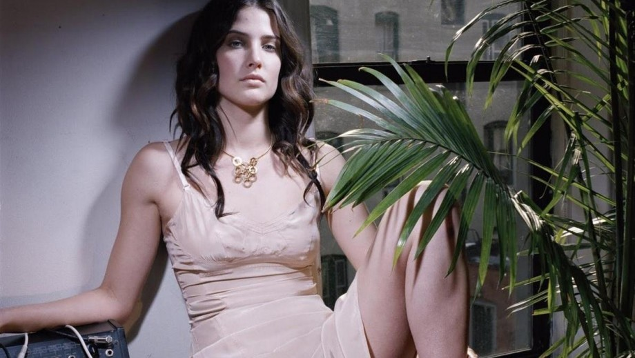 Cobie Smulders shows her leading lady potential with new movie Results