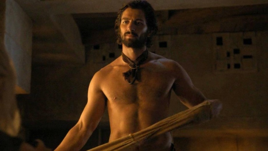 Michiel Huisman's Age of Adaline performance earns him heart throb status
